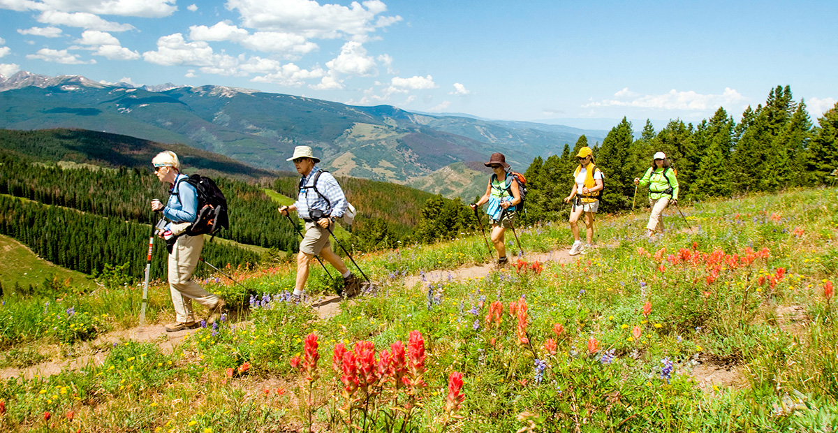A wildflower hike near Vail