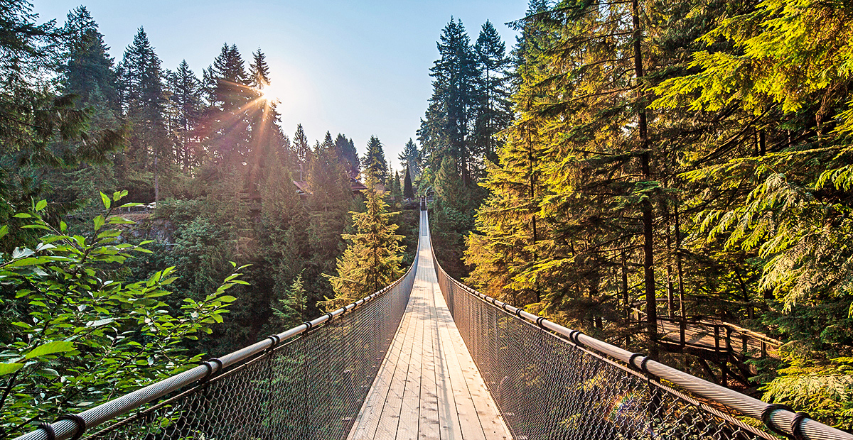 1128_VAN_Capilano-Suspension-Bridge-with-Sunrise