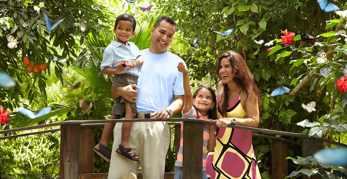 21963_ARUBA_Butterfly Farm_ Family at The Butterfly Farm