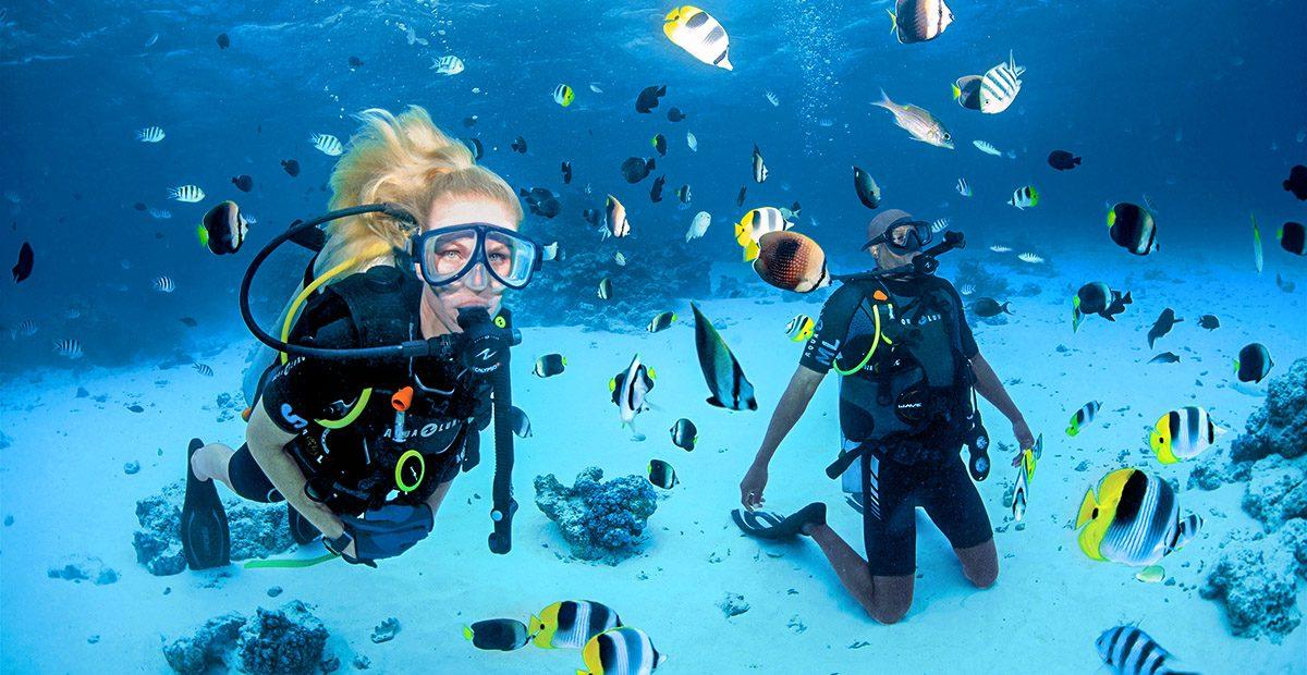 23915_PAUL_CG.A_Diving-Bora_D8X_4257-hi