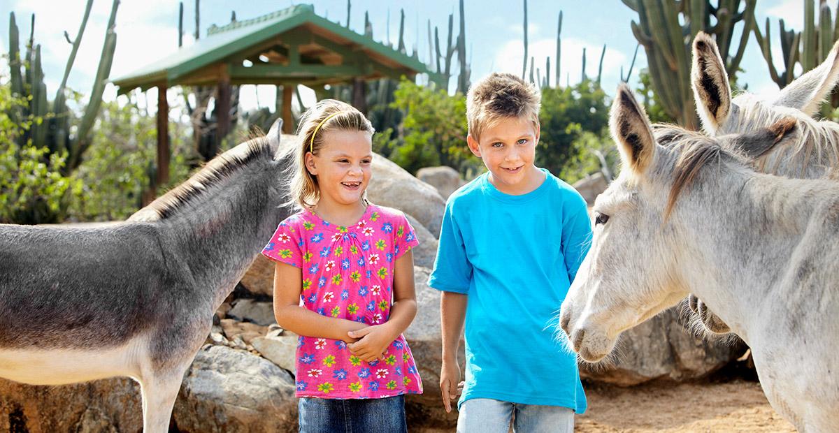 25513_ARUB_Donkey Sanctuary_ Kids at Donkey Sanctuary