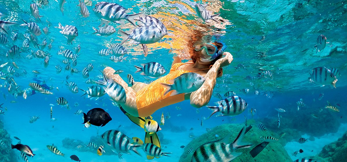 Snorkel the translucent, turquoise lagoons of French Polynesia on one of our many optional excursions.